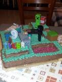 Minecraft for a 9th birthday